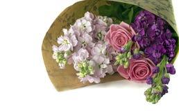 Bos van roze rozen en voorraden royalty-vrije stock afbeeldingen