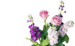 Bos van roze rozen en voorraden royalty-vrije stock afbeelding