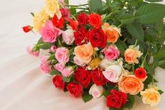 Bos van rozen Royalty-vrije Stock Fotografie