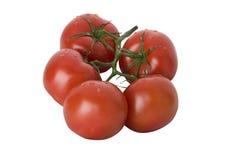 Bos van tomaten Royalty-vrije Stock Foto