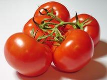 Bos van tomaten. Stock Afbeelding