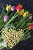 Bos van tulpen stock afbeeldingen