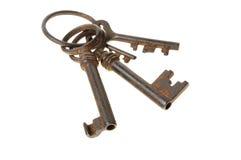 Bos van uitstekende sleutels Stock Foto's