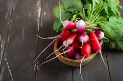 Bos van verse kleurrijke radijzen op oude rustieke houten lijst Stock Foto's
