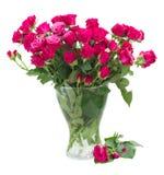 Bos van verse mauve rozen Stock Foto's