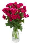 Bos van verse mauve rozen Stock Afbeelding