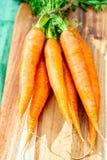 Bos van verse oranje de zomerwortelen, nieuwe oogst van gezonde groenten stock fotografie