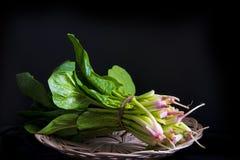 Bos van verse spinazie Stock Fotografie