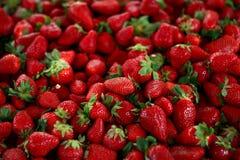 Bos van verse strawberrys op de markt voor verkoop Royalty-vrije Stock Afbeeldingen