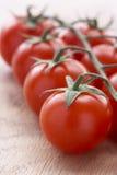 Bos van Verse Tomaten Stock Fotografie