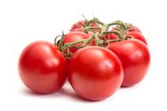 Bos van verse tomaten Geïsoleerdj op witte achtergrond Royalty-vrije Stock Afbeeldingen