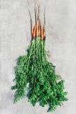 Bos van verse wortelen Stock Foto