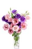 Bos van violette en roze eustomabloemen Stock Afbeeldingen