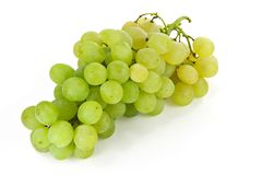 Bos van witte druiven Stock Foto
