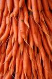 Bos van wortelen Stock Afbeeldingen