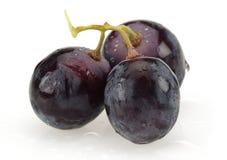 Bos van zwarte druiven op witte achtergrond royalty-vrije stock foto