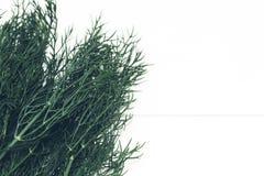 Bos verse, groene dille op een witte achtergrond, de bron van vitaminen en mineralen voor mensen stock fotografie