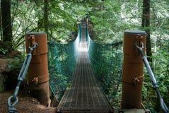 Bos Voetgangersbrug Stock Afbeeldingen