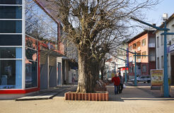 Bosanska street in Bihac. Bosnia and Herzegovina Stock Photo