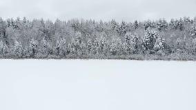 Bosantenne van de wintertijd schoot de sneeuwberg adembenemend natuurlijk landschap, bevroren bos en donkere bergrivier stock footage