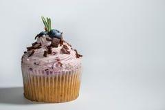 Bosbes cupcake Royalty-vrije Stock Foto's