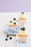 Bosbes cupcakes Royalty-vrije Stock Fotografie
