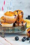 Bosbes en citroenmuffins Stock Afbeeldingen
