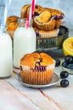 Bosbes en citroenmuffins Royalty-vrije Stock Fotografie