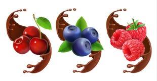 Bosbes, kers en framboos in de reaistic reeks van de chocoladeplons stock illustratie