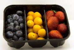 Bosbessen, aardbeien, physalis stock foto