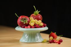 Bosbessen, aardbeien, redcurrant en wilde aardbeien Royalty-vrije Stock Foto's
