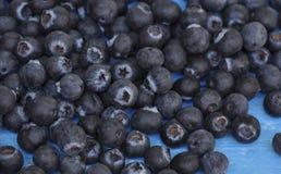 Bosbessen blauw fruit Royalty-vrije Stock Afbeeldingen