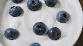 Bosbessen in de organische video van de yoghurt roterende lijn, 4k-lengte stock videobeelden