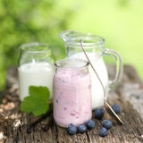 Bosbessen en yoghurt Stock Afbeelding