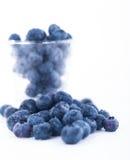 Bosbessenfruit Royalty-vrije Stock Fotografie