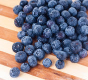 Bosbessenfruit Stock Fotografie