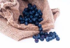 Bosbessenfruit op zak Royalty-vrije Stock Afbeelding