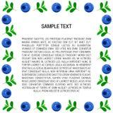 Bosbessenkader met Tekst Stock Afbeeldingen
