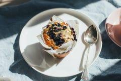 Bosbessenmuffin voor ontbijt stock foto