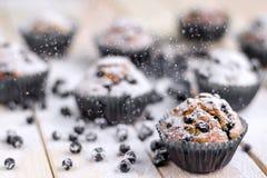 Bosbessenmuffins met gepoederde suiker Stock Foto's
