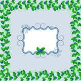 Bosbessenprentbriefkaar Stock Afbeelding