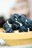 Bosbessenroom cupcake Stock Foto's