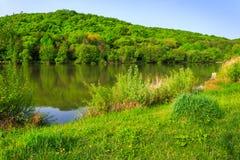 Bosbezinning over het meer op de achtergrond van bergen Royalty-vrije Stock Foto's