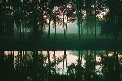 Bosbezinningen over het meer stock afbeeldingen