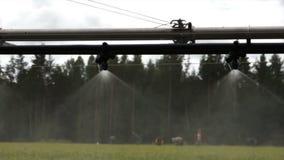 Bosbouw automatisch het water geven langzaam materiaal stock videobeelden
