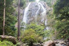 Bosbouw en water Royalty-vrije Stock Afbeelding