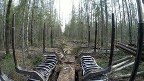 bosbouw Mening van kant van registreerapparaat bij ladingslogboeken stock video