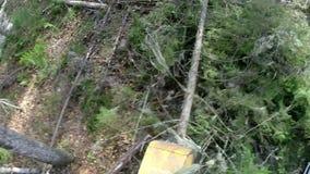 bosbouw Mening van kant van registreerapparaatwapen stock footage