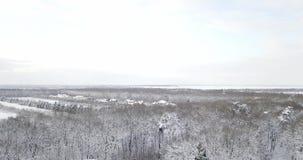 bosbouw Sneeuwbomen en tak in een mening van het landschap van de de winter bosdieWinter, bos, bomen met vorst worden behandeld stock footage