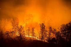 Bosbrand, appalachian bergen, toneel Stock Foto's